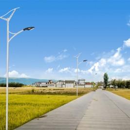 100W LED Wave Solar Street Light With Flexible Solar Panels-2FSG149