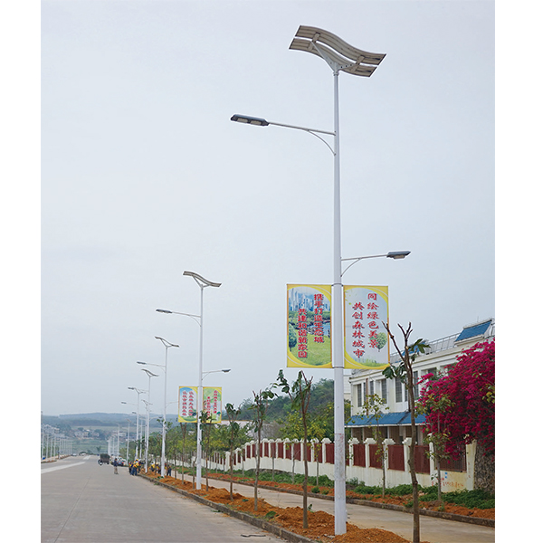 60W+20W Dual lamp LED solar street light with flexible solar panels-high powered